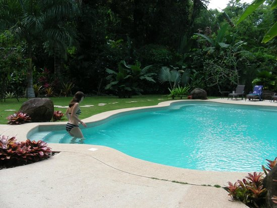 Hotel Shawandha Lodge : Pool