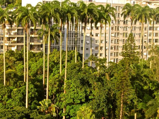 Windsor Florida Hotel : view from my room of the museo republico gardens