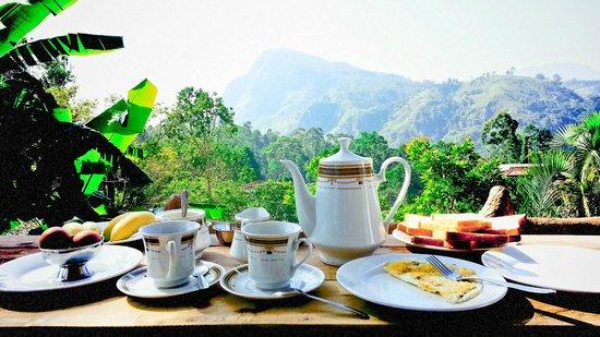 Eden View Guest Home: завтрак на балконе.