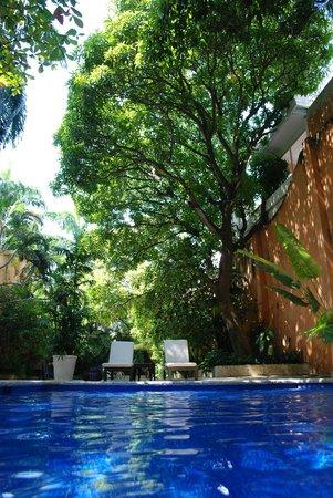 Casa Pestagua Hotel Boutique, Spa: Piscina rodeada de árboles