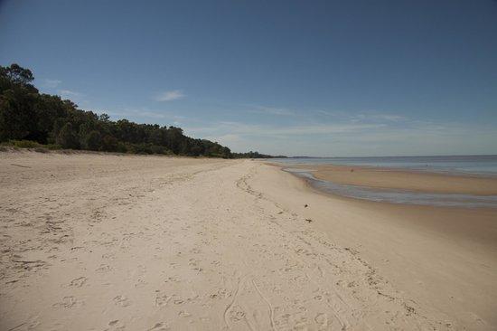 Blancarena Lab: beach