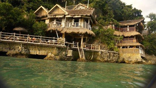Spider House Resort: Spider house