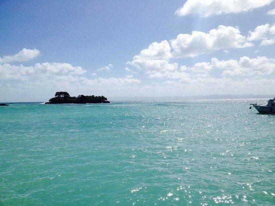 Ausflug Bild Von Grand Bahia Principe El Portillo Las Terrenas