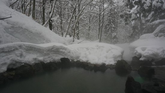 Ganiba Onsen: 露天風呂