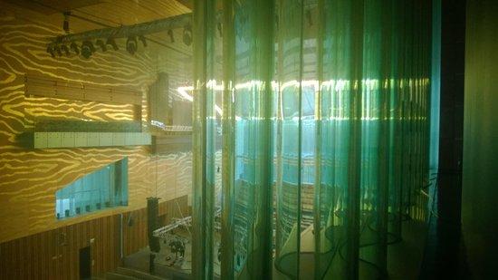 Casa da Musica: Le vetrate studiate per un'acustica perfetta