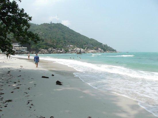 Thong Takhian Beach (Silver Beach) : troppe alghe sulla spiaggia