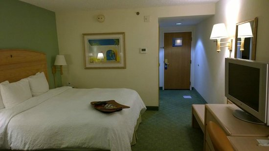 Hampton By Hilton Miami-Coconut Grove/Coral Gables: Room view#2