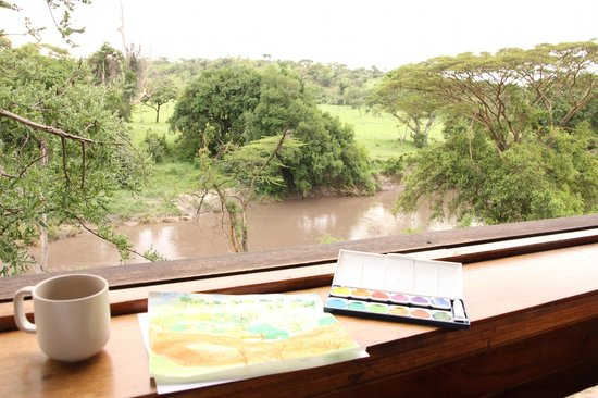 Singita Faru Faru Lodge: Room view.