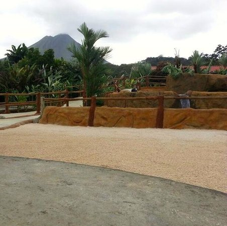 فولكانو لودج آند سبرينجس: Hot Springs View