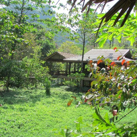 Khao Sok Paradise Resort: View from the house