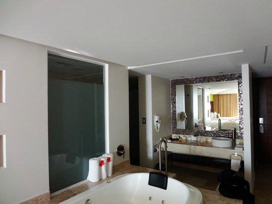 Azul Ixtapa Grand Spa & Convention Center: Open bathroom