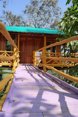 Dream Catcher Plantation Resort : tree house with pink boardwalk - quirky!