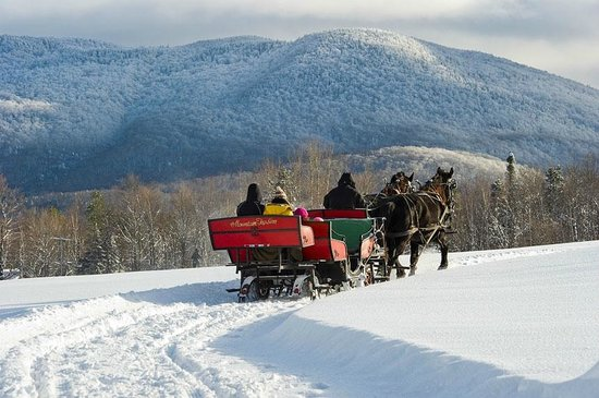 The Mountain Top Inn & Resort: Horse drawn sleigh rides