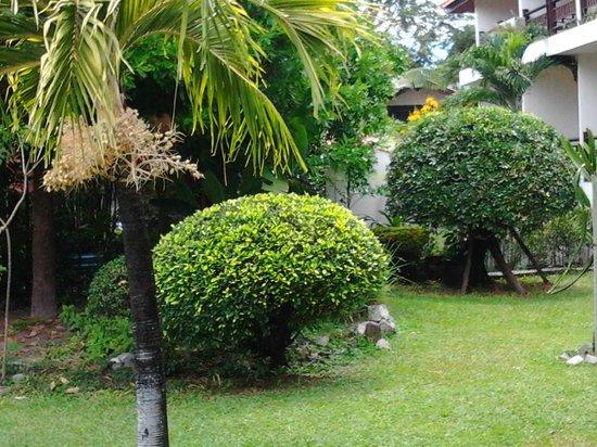 Sunshine Garden Resort: Красота