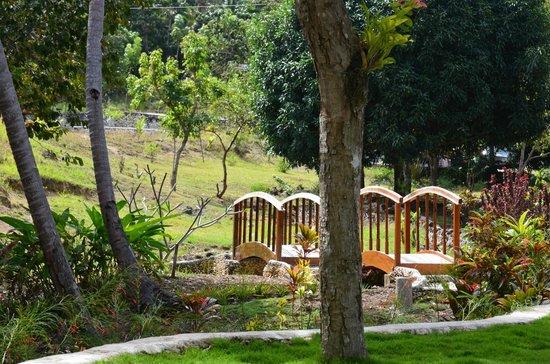 Enrique Villanueva, Филиппины: Kalachuchi Garden View