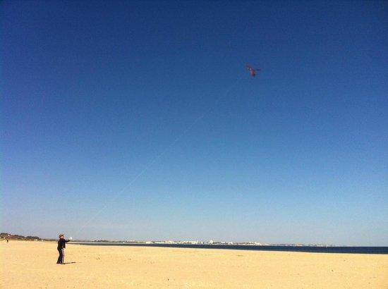 Kite flying on Meia Praia