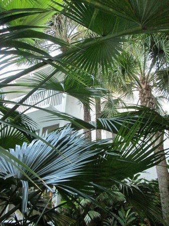 Hilton Fort Lauderdale Marina: Privacy