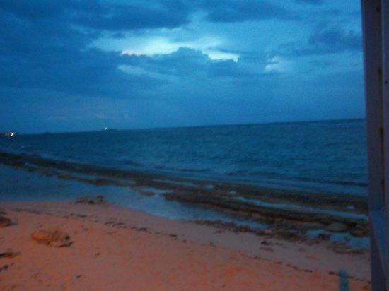 Decameron San Luis : Playa frente al hotel al amanecer