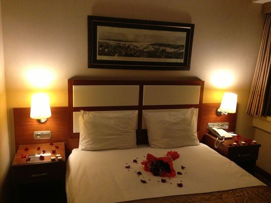 Istanbul Golden City Hotel: Room 501