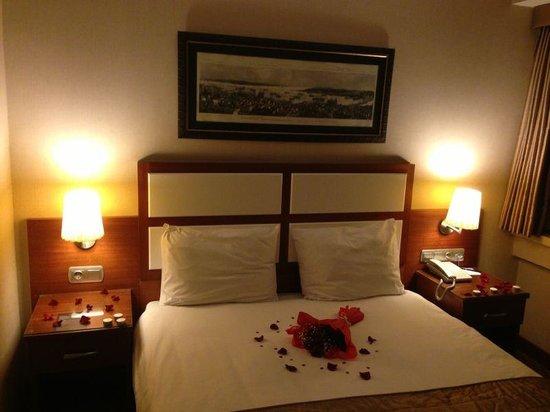 Istanbul Golden City Hotel : Room 501