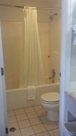 Wye Motel : Bathroom