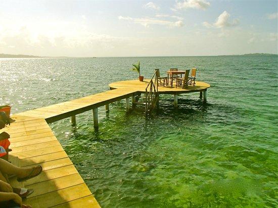 The Blue Coconut: Swim Platform