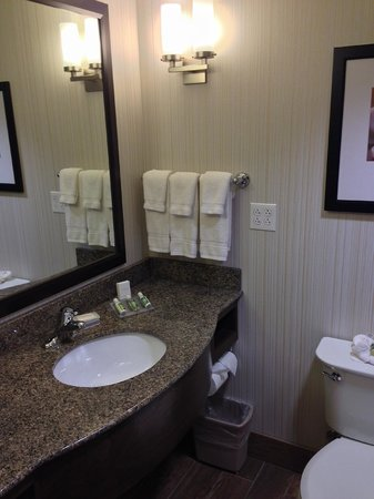 Hilton Garden Inn Salt Lake City Airport: Granite counters, clean bathroom