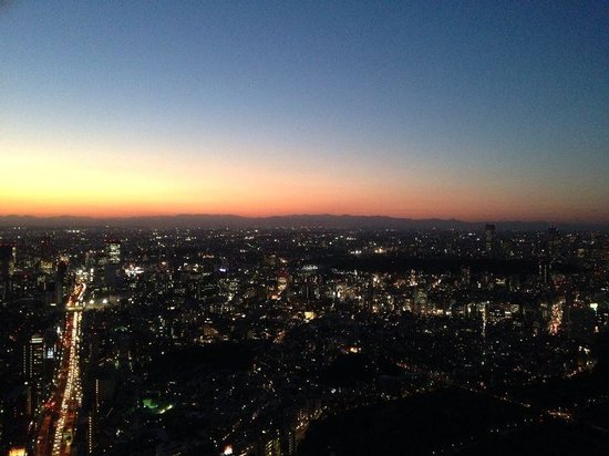Tokyo City View Observation Deck (Roppongihills) : Magique!