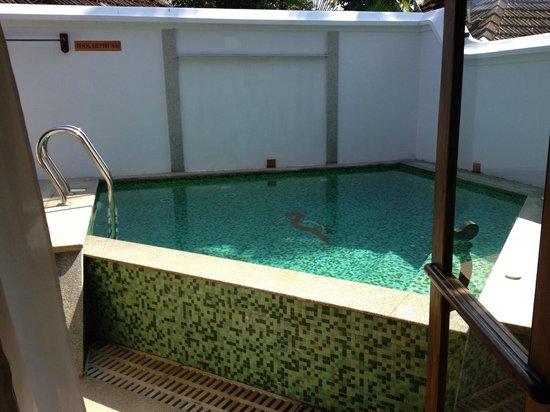 Kumarakom Lake Resort: Private Villa Pool & Jacuzzi
