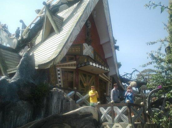 Crazy House: домик