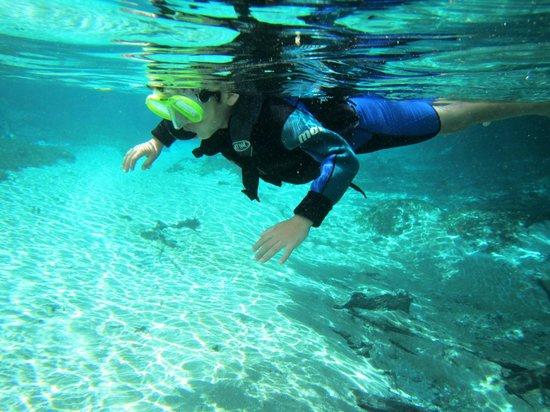 Hotel Pousada Aguas de Bonito: Bonito um lugar maravilhoso