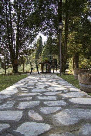 Agriturismo Tenuta Cantagallo: Esterni- Outdoors