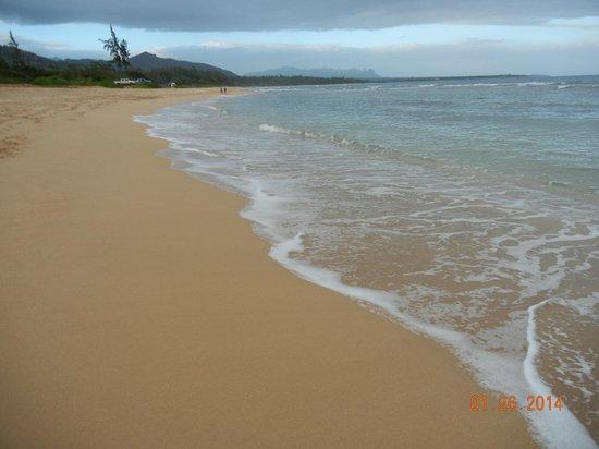 Kauai Beach Resort : beach