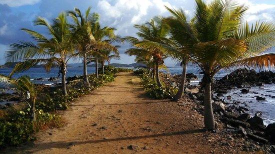 Sapphire Village Resort at Sapphire Beach: Sapphire Beach Outlook