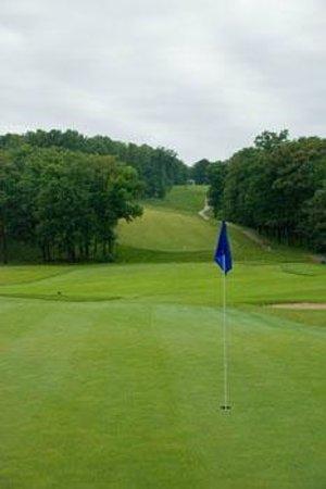 Bear Creek Valley Golf Club: Hole  #8