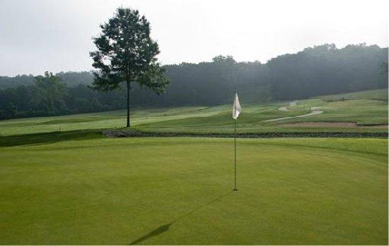 Bear Creek Valley Golf Club: 15th Green