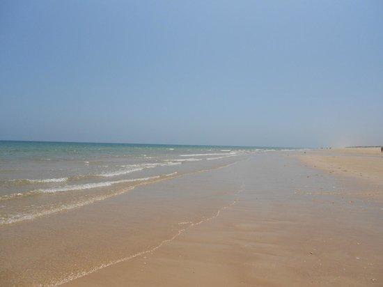 Praia da Terra Estreita : great beaches