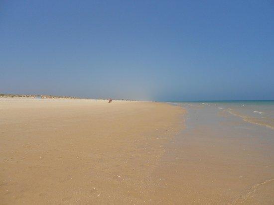 Praia da Terra Estreita: nice!