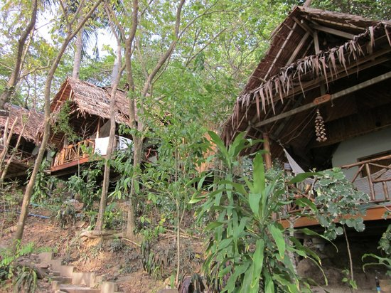 Viking Natures Resort: dans les arbres