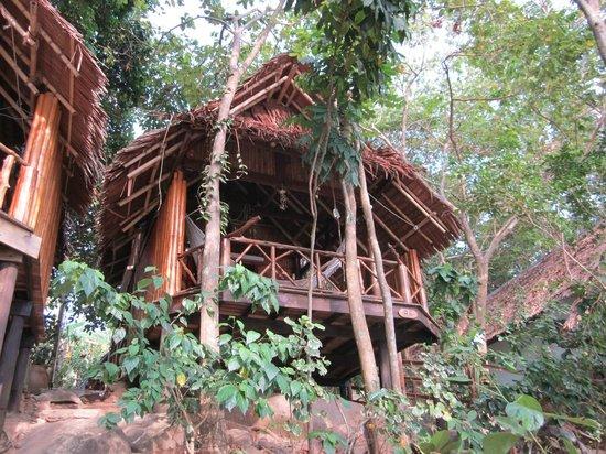 Viking Natures Resort : bumgalows