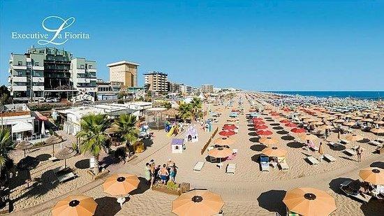 Hotel Executive La Fiorita: Il nostro Hotel... In prima linea sul mare