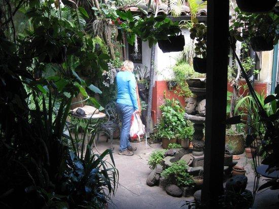Posada Belen Museo Inn: garden area