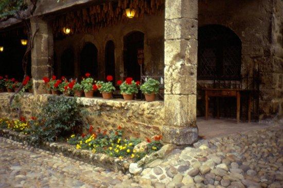 Cite medievale de Perouges: fiori