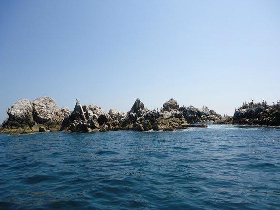 Dreams Huatulco Resort & Spa: Pelican Rocks