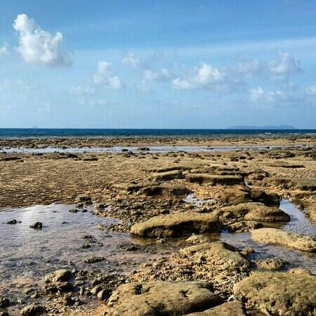 Paya Beach Spa and Dive Resort: lowtide. A perfect time for a stroll.
