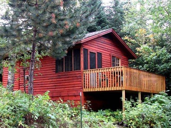 Big Bear Lodge and Cabins: Cabin 2