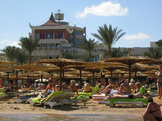 Hurghada SeaGull Beach Resort: пляж