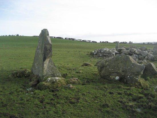 Bocan Stone Circle: Profile