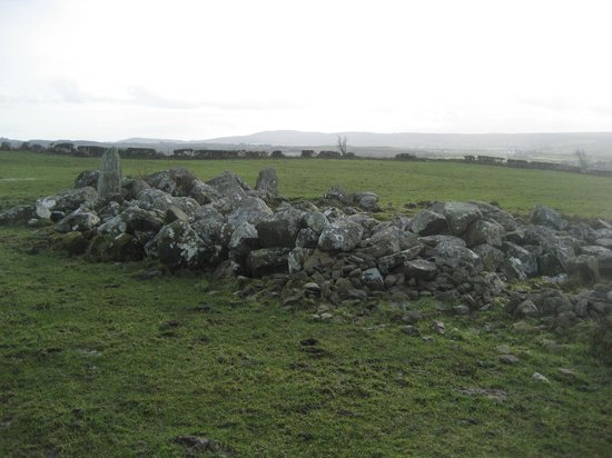 Bocan Stone Circle: From behind