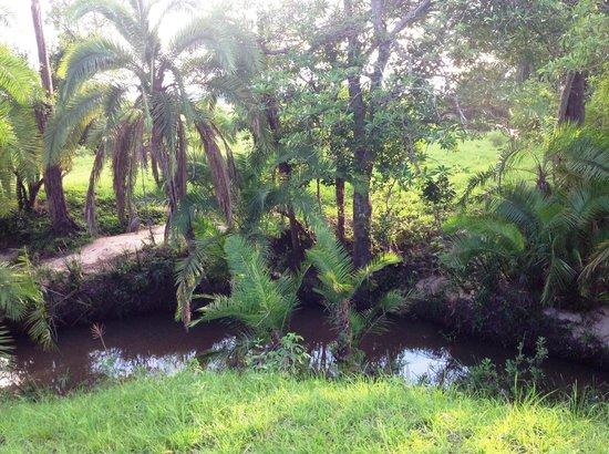 Enkewa Camp: un oasis en medio de la sabana